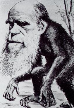 Caricatura de Darwin