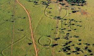 Descubren restos de una civilización desconocida en el Amazonas