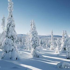 Una ola de frío nunca vivida en Suecia