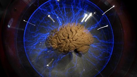 Un chip como segundo cerebro