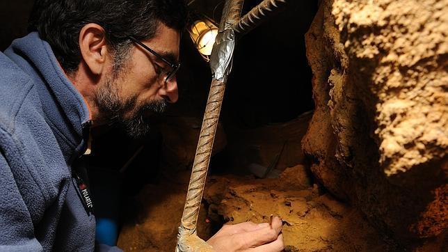 Los neandertales intercambiaban hembras para evitar la endogamia