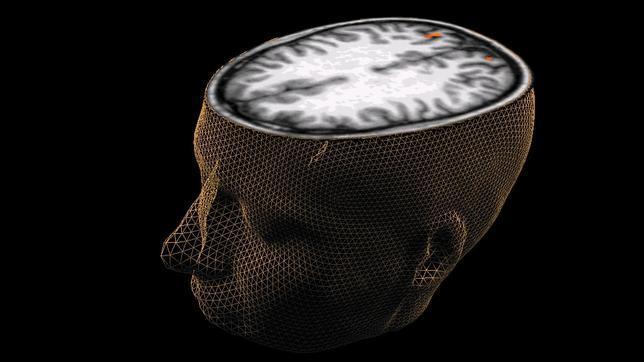 El cerebro toma las decisiones 200 milisegundos antes de que lo sepamos