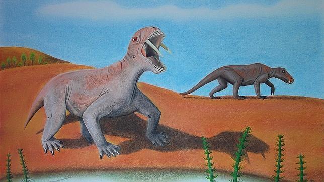 Descubren una extraña especie de animal con «dientes de sable»