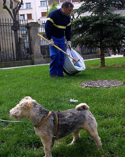 Hernani implanta el ADN canino para multar por sus excrementos