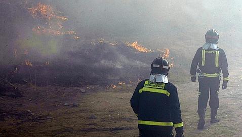 Aparatoso incendio de pastos junto al pinar de Barajas