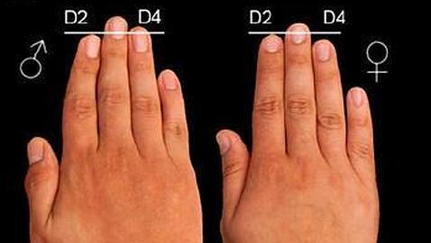 Por qué los hombres tienen el dedo anular más largo? - ABC.es
