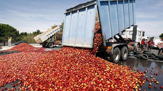 Un tercio de la comida mundial acaba en el cubo de la basura