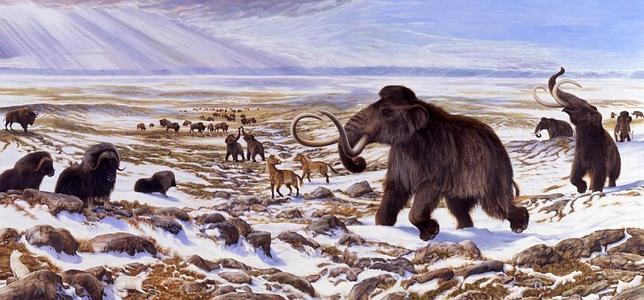 El hombre ya exterminó dos especies animales hace 16.000 años