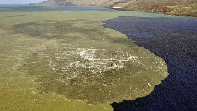 El agua sobre el volcán está 11 grados más caliente que en el resto de la costa de El Hierro