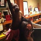 Demi Moore cambia a Ashton Kutcher por un mono en el día de su cumpleaños