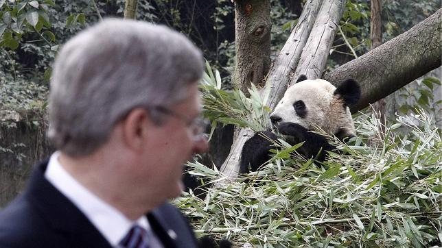 China y Canadá sellan la «diplomacia del panda»