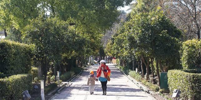 Entrada principal al real jard n bot nico de c rdoba por for Entrada jardin botanico madrid