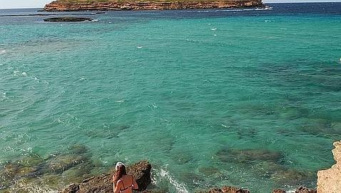 Alicante proyecta reabrir la conexión marítima con Ibiza y Mallorca