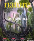 Desentierran un mundo perdido
