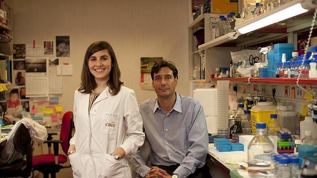 Una investigación española abre la puerta a un tratamiento contra el cáncer y la obesidad