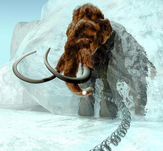 Científicos rusos quieren clonar un mamut congelado hace 10.000 años