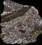 El bombardeo de los 2.000 millones de años