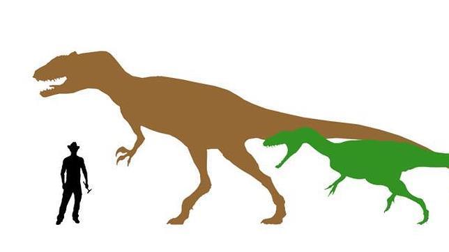 Hallan el diente de dinosaurio carnívoro más grande de España
