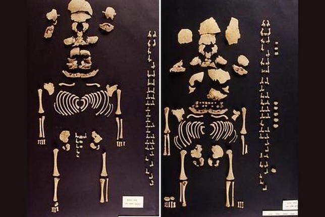 El primer caso de gemelas prehistóricas sale a la luz