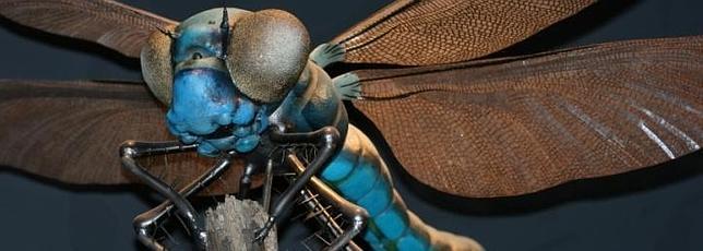 El reino de los insectos gigantes