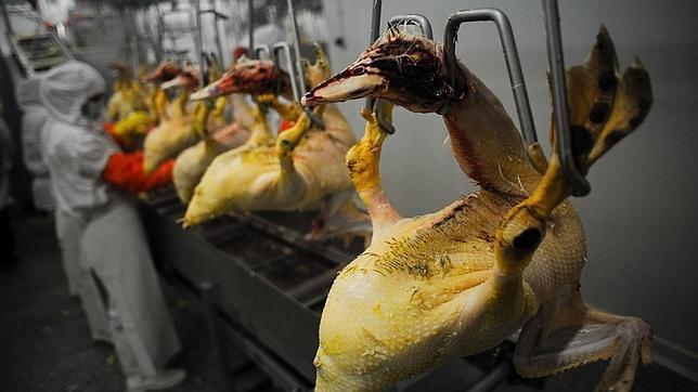 California deja de comer foie-gras