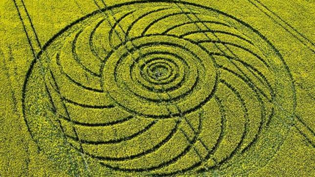 ¿Qué hay detrás de los círculos de las cosechas?