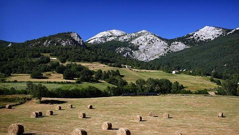 Los diez hayedos más espectaculares de España