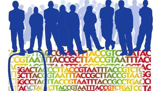 Primer mapa de la diversidad genética humana
