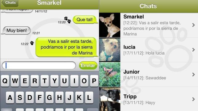 Nace el whatsapp para perros