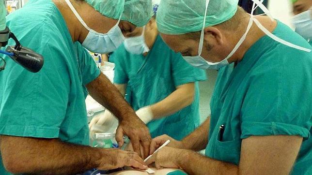 Sanidad refuerza la seguridad del donante vivo
