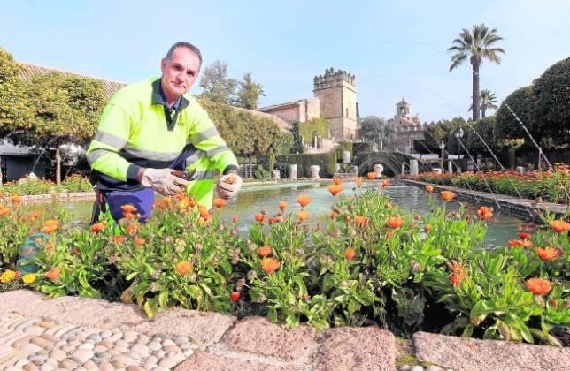 Disfruto con mi trabajo for Trabajo jardinero