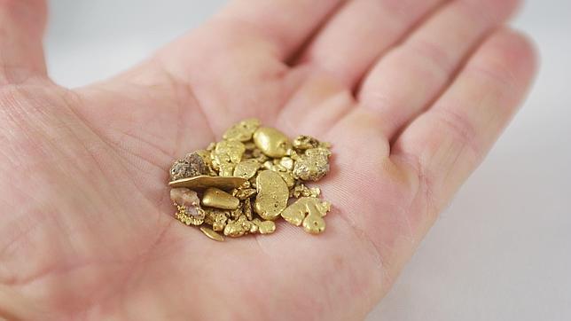 Una bacteria convierte toxinas en oro for Que es una beta de oro