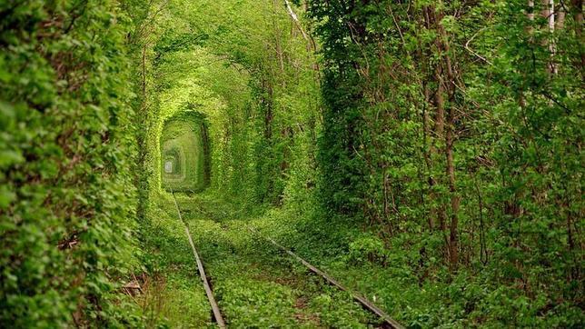 Fotografías Tunel-amor-ucrania1--644x362