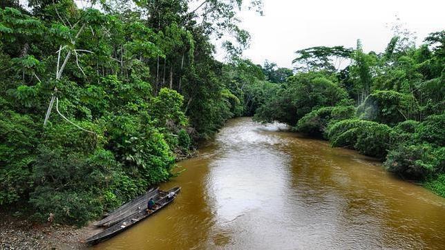 Alemania entrega 46 millones de dólares para la conservación del Yasuní