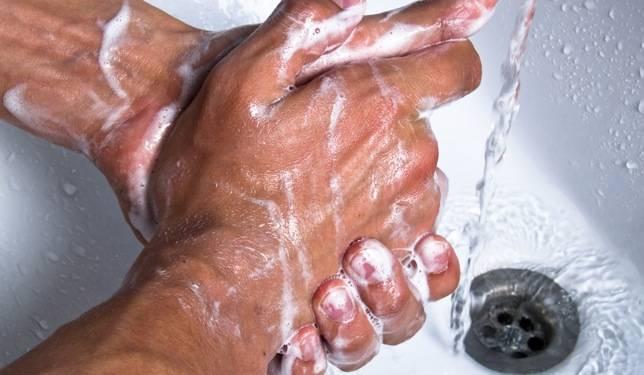 Cómo llegan las bacterias fecales a los alimentos