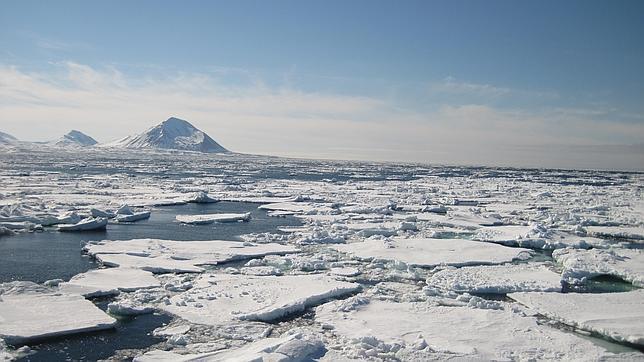 Parte del Ártico se cubrirá de bosques en unos decenios