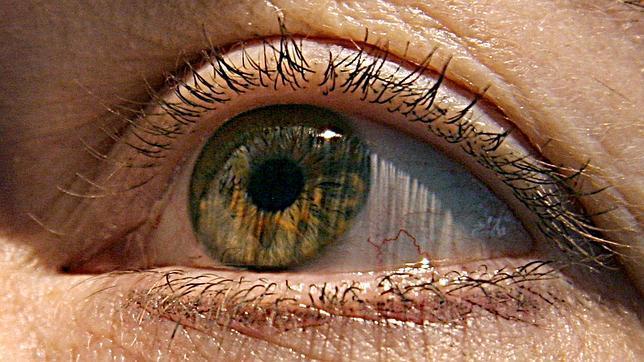 Que el ojo dominante sea el derecho o el izquierdo depende de la lateralidad