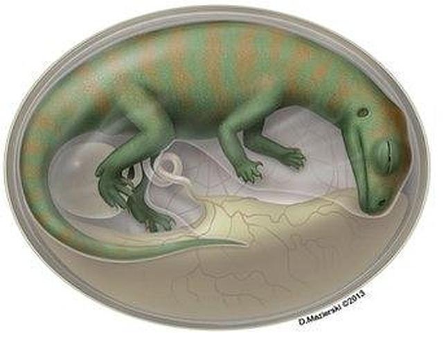 Los embriones de dinosaurio más antiguos jamás encontrados