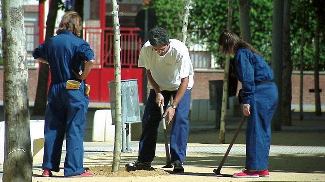 El ayuntamiento oferta 120 puestos de trabajo - Trabajo jardinero madrid ...