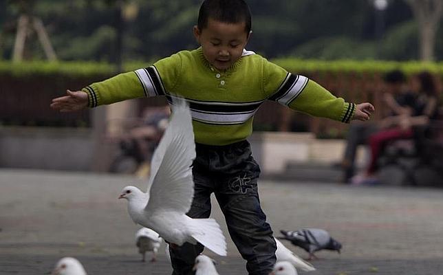 La OMS asegura que la nueva cepa de gripe aviar en China es «una de las más letales»