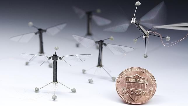 La extraordinaria mosca robótica de Harvard