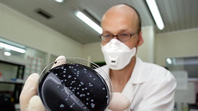 Descubren el mecanismo que permite a la Legionella camuflarse en el organismo