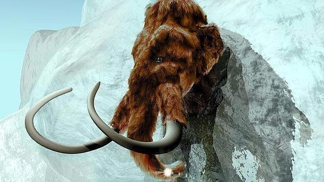 Hallan sangre en los restos de un mamut en el Ártico
