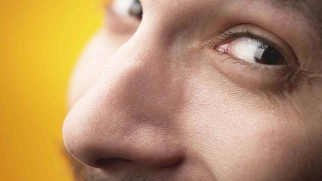 ¿Por qué las narices tienen formas diferentes?