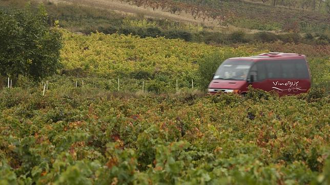 El Vinobús, en La Rioja