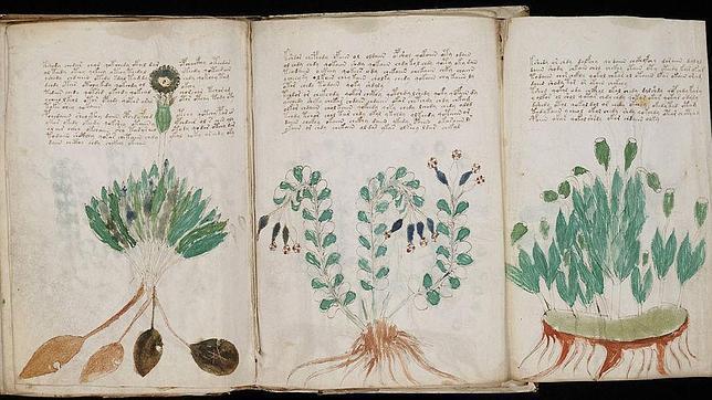 Hallan indicios de un idioma secreto en el misterioso libro de Voynich