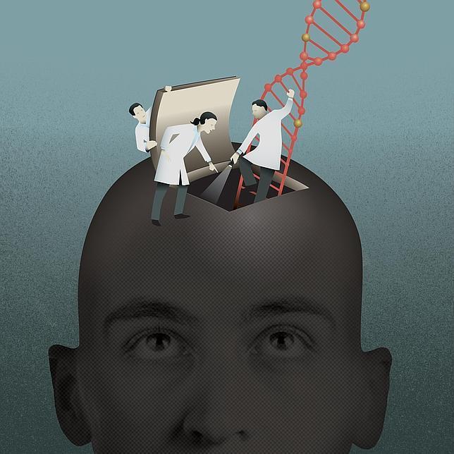 La rebeldía adolescente se debe a una reforma especial del cerebro