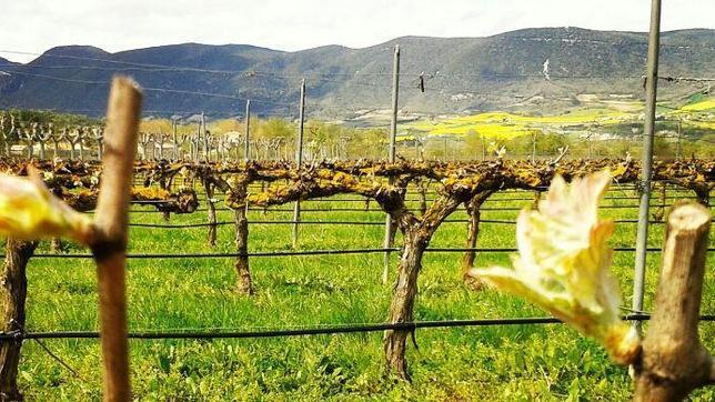 Diez rincones con encanto para redescubrir Navarra