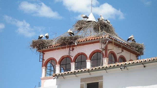 Los mejores tejados de espa a para ver cig e as - Dibujos de tejados ...
