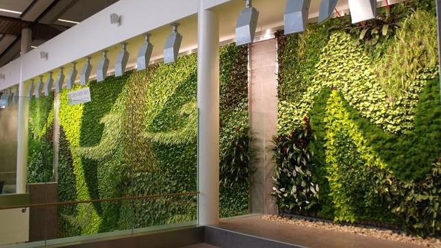 Como hacer un jardin vertical de interior simple el resultado es un producto muy fcil de montar - Como hacer jardines verticales ...